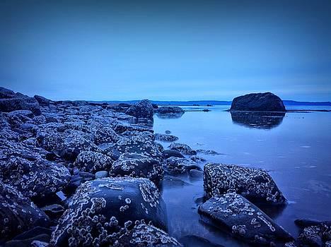 Blue 1 by Christine Sharp