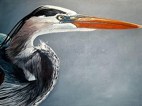 Blue and Gray by Jon Ferrentino