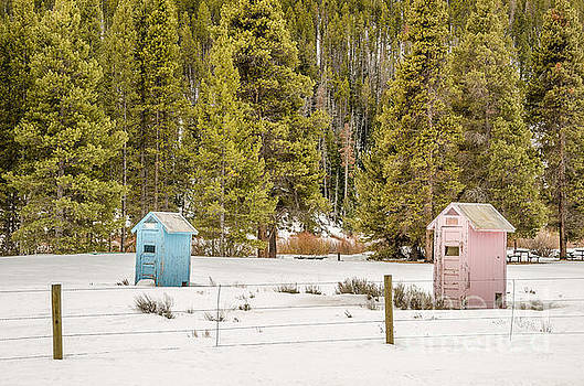 Blue and Pink Outhouses by Sue Smith