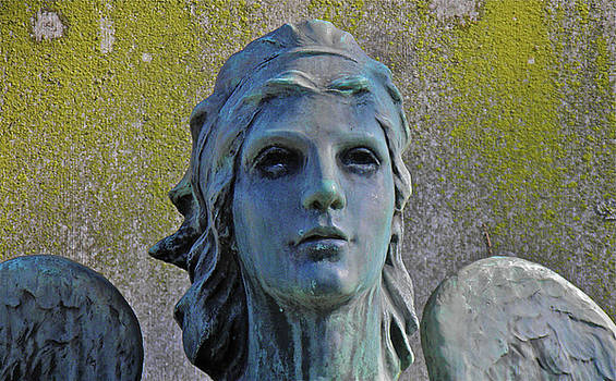 Blue Angel by E Robert Dee