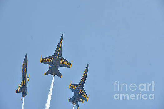 Blue Angels by Jim DeLillo