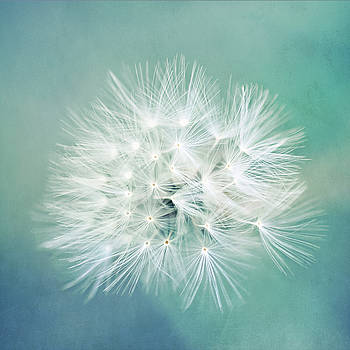 Blue Awakening by Trish Mistric