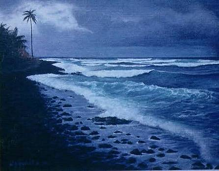 Blue Beach by William H RaVell III