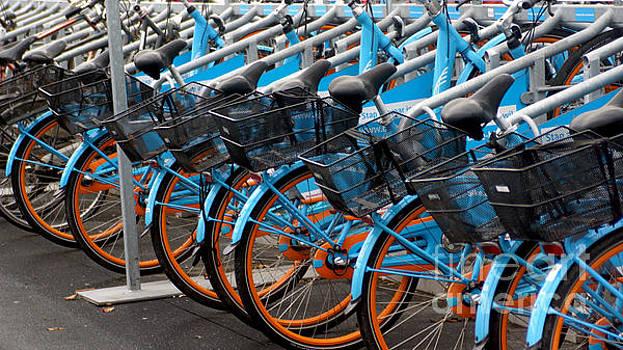 Blue Bikes by Eva-Maria Di Bella