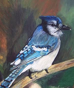 Blue Bird by Andrea Inostroza