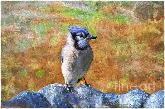 Blue Bird - Digital Paint by Debbie Portwood