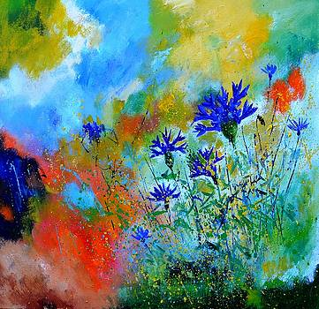 Blue cornflowers 8861 by Pol Ledent