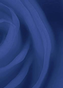 Blue Day by The Art Of Marilyn Ridoutt-Greene
