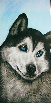 blue eye Husky  by Anastasis  Anastasi