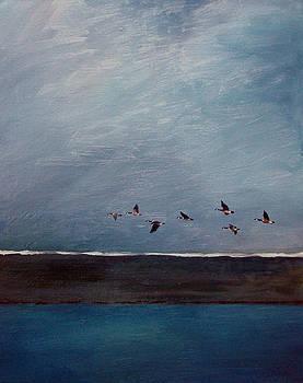 Blue Flight by David  Maynard