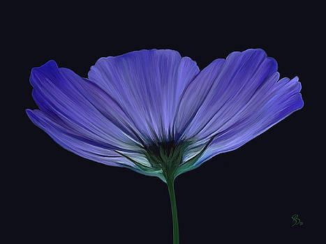 Blue Flower by Sue  Brehant