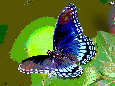 Blue Flying Butterfly by Charles Shoup