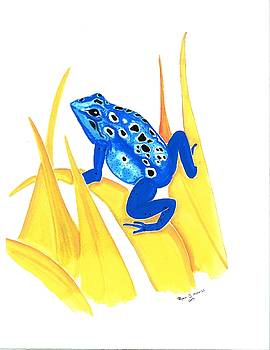Blue Frog by Ryan D Merrill