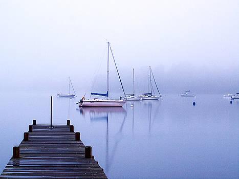 Blue haze by Susan Tinsley