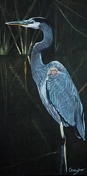Blue heron by Jean Yves Crispo