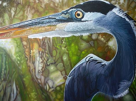 Blue Heron by Jon Ferrentino