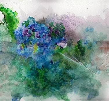 Blue Hydrangea by Sandi Stonebraker