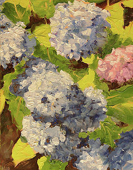 Blue Hydrangeas by Mary McInnis
