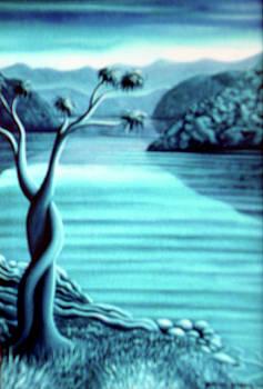 Blue in Marlborough NZ by Barbara Stirrup