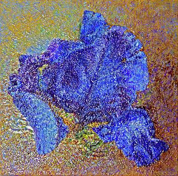 Blue Iris by Natalya Shvetsky