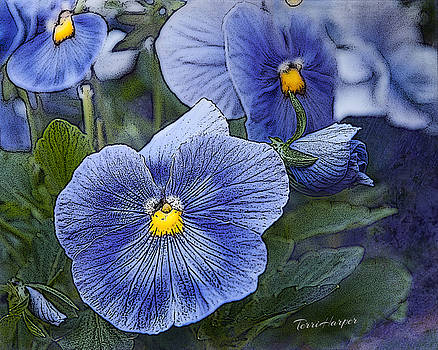 Blue Ladies by Terri Harper