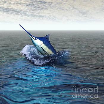 Corey Ford - Blue Marlin