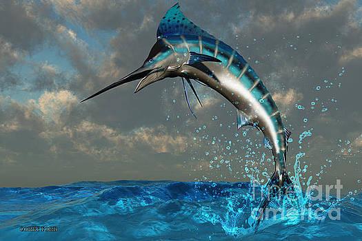 Corey Ford - Blue Marlin Splash