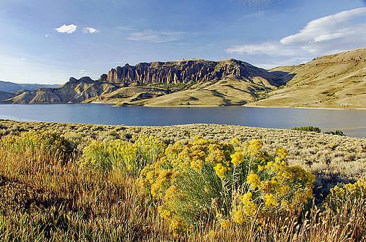 James Steele - Blue Mesa Lake Co