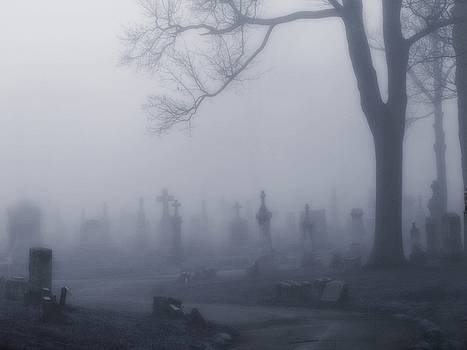Blue Misted Fog by Gothicrow Images