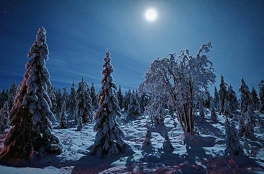 Blue moon by Peder Lundkvist