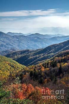 Blue Mountains Majesty by Debbie Green