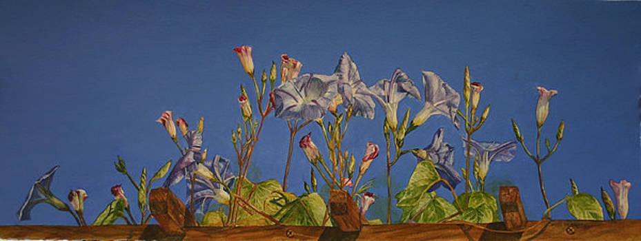 Blue on Blue by Helen Shideler