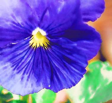 Blue Pansy by Donna Bentley
