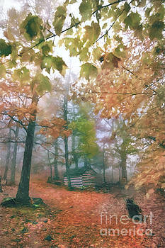 Dan Carmichael - Blue Ridge Cabin in Foggy Autumn AP
