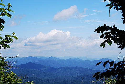 Blue Ridge Mountains by Patricia Motley