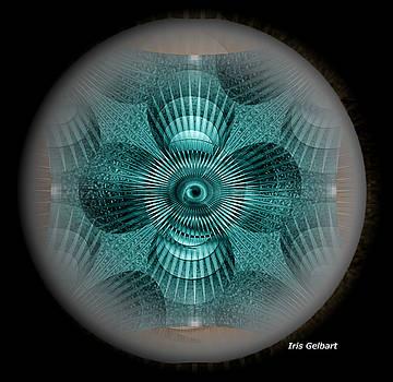 Blue Shells by Iris Gelbart