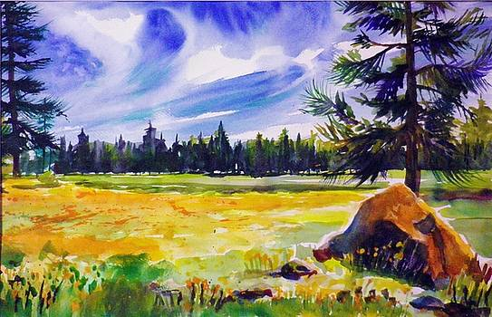 Blue Skies Pines and Meadows by Therese Fowler-Bailey