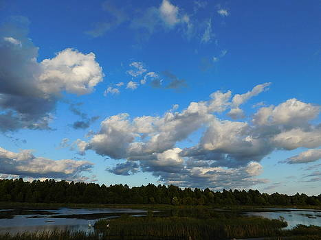 Blue Sky Ohio Landscape by Nancy Spirakus