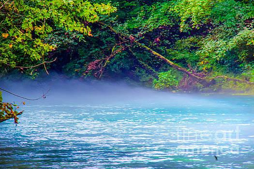 Blue Springs River Mist by Peggy  Franz