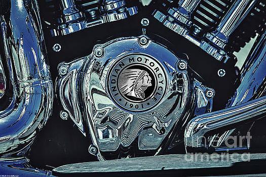 Blue Steel Indian by Mitch Shindelbower