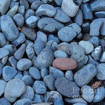 Blue Stones and One Red by Anita Adams