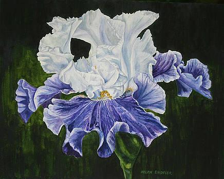 Blue Taffeta by Helen Shideler