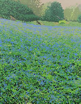 Bluebell hill by Malcolm Warrilow