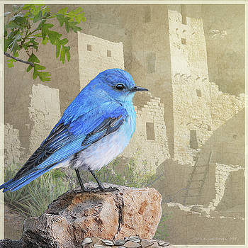 Bluebird At The Cliff Palace by R christopher Vest