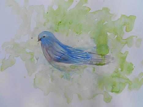 Bluebird by Barbara McNeil
