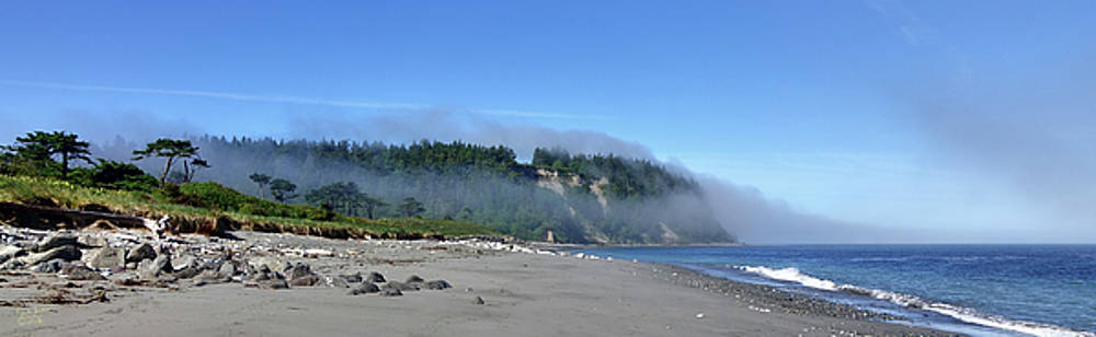 Bluff, Beach and Fog by Rick Lawler