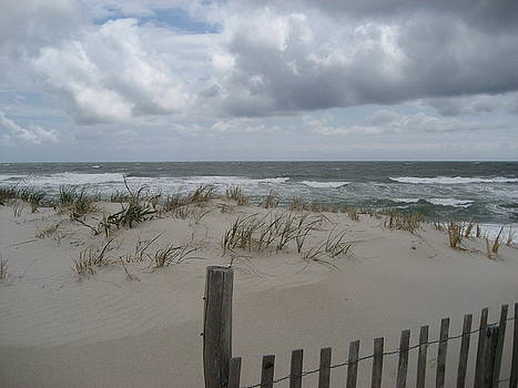 Blustery Day At Beach by Jennifer  Sweet