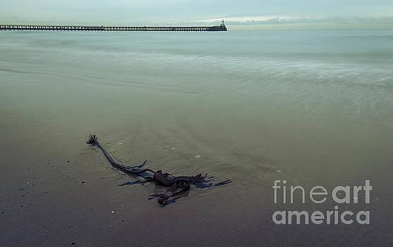 Blyth Beach and Pier #1 by John Cox