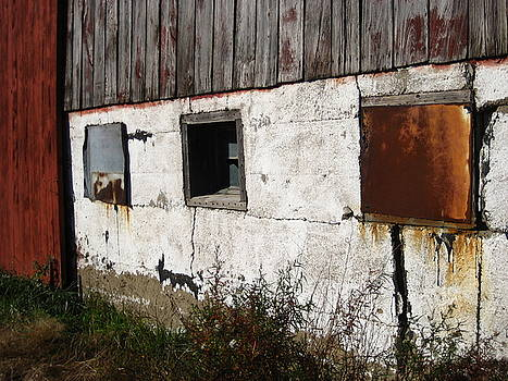Boarded Up by Sheryl Burns