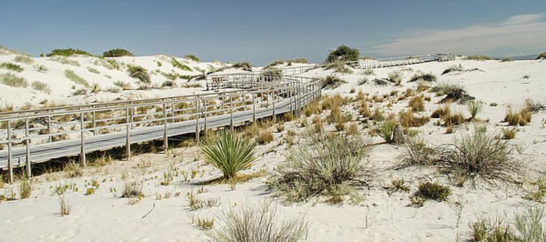Allen Sheffield - Boardwalk on the Sands